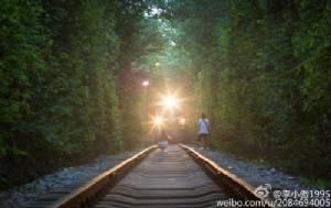ชาวเน็ตจวกสาวจีนหาเรื่องตาย ยืนถ่ายรูปกลางรางจนรถไฟต้องหยุดวิ่ง (ชมภาพ)