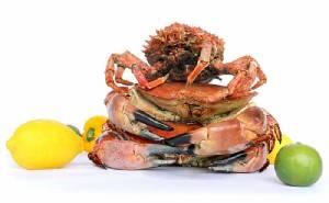 """เต็มอิ่มความอร่อย  """"อาหารทะเล"""" สดใหม่จากทั่วทุกมุมโลก"""