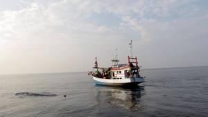 """นักท่องเที่ยวแห่ชม """"วาฬบรูด้า"""" ที่หาดเจ้าสำราญวันหยุดยาวคึกคัก"""