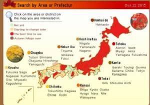 เผยปฏิทินเตรียมพร้อมชมใบไม้เปลี่ยนสีที่ญี่ปุ่น