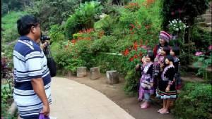 """""""ดอยปุย""""คึกคักเร่งจัดแปลงปลูกไม้ดอกเมืองหนาวรับนักท่องเที่ยว-ซากุระเมืองไทย""""ขุนช่างเคี่ยน""""เริ่มผลัดใบ"""