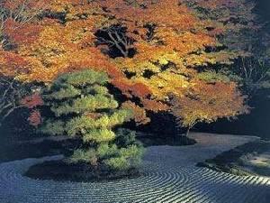 ไปเบียดกันเดินชมใบไม้เปลี่ยนสีที่เกียวโตกันไหม?