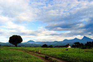 """ยืนยัน! พบ """"แหล่งน้ำมัน"""" ใต้ผืนป่ามรดกโลก """"วิรุนกา"""" ในสาธารณรัฐประชาธิปไตยคองโก"""