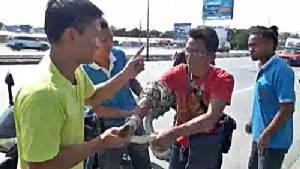 หนุ่มชลบุรีสงสารงูเหลือมเลื้อยข้ามถนนกลัวรถเหยียบตาย เข้าไปช่วยถูกกัดบาดเจ็บ(ชมคลิป)