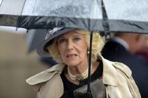Portrait of Camilla's ex sells for $34.89 mn in New York
