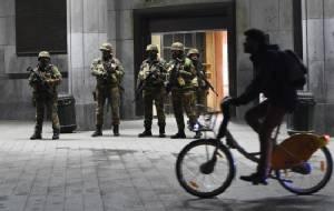 Feline surreal: Belgians tweet cat photos for #BrusselsLockdown