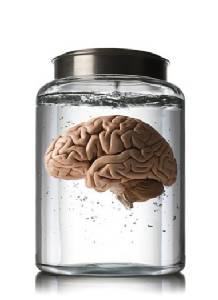 หนุ่มมะกันขโมยสมองจากอดีตโรงพยาบาลบ้า เอาไปขายออนไลน์บนอีเบย์