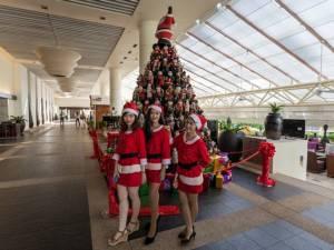 """""""ฮิลตัน ภูเก็ต อาเคเดีย รีสอร์ท แอนด์ สปา"""" เปิดไฟต้นคริสต์มาสต์ต้อนรับเทศกาลแห่งความสุข"""