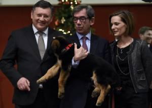 "In Pics & Clips : ชื่นมื่น! รัสเซียมอบลูกสุนัขตัวใหม่ให้ฝรั่งเศสทดแทน ""เจ้าดีเซล"" สุนัขตำรวจที่ตายระหว่างล่าคนร้ายโจมตีปารีส"