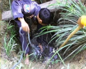 เจ้าหน้าที่กู้ภัยจันทบุรีช่วยเหลือหมูหริ่ง สัตว์ป่าคุ้มครอง หลังพลัดตกบ่อน้ำของชาวบ้าน