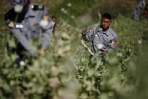 สหประชาชาติชี้ปัญหายาเสพติดเป็นบททดสอบใหญ่สำหรับรัฐบาลซูจี