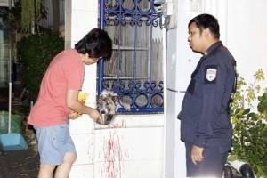 กู้ภัยเมืองพัทยาช่วยเหลือสุนัขซุกซน หัวติดรั้ว