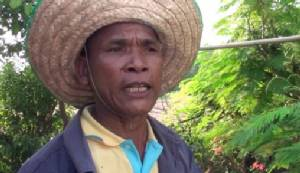 เกษตรกรบุรีรัมย์พลิกวิกฤตหันปลูกผักพื้นบ้านใช้น้ำน้อยขายหน้าแล้ง