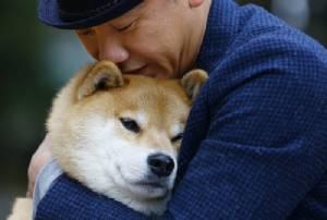 จากสุนัขป่ามาเป็นสุนัขบ้าน