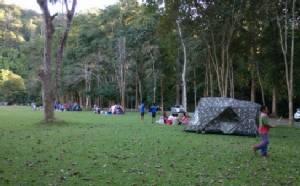 คนแน่นสุโขทัย แห่เที่ยวเมืองโบราณ-กางเต็นท์สูดโอโซนกลางป่าคา