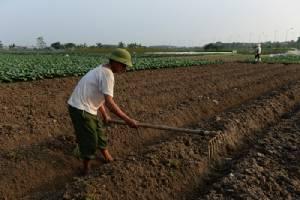 ฝึกเกษตรกรให้เป็นนักวิจัยในสถานการณ์โลกร้อน