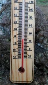"""""""ภูชี้ฟ้า"""" ติดลบแล้ว เช้านี้วัดได้ต่ำสุด -2 ที่เชียงใหม่ เชียงราย พะเยา ยะเยือก-ไร้แม่คะนิ้ง"""