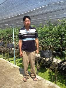 พลิกวิกฤตน้ำท่วมลุกสู้อีกครั้ง บุกเบิกสวนมะนาวลอยฟ้าในฟาร์มกล้วยไม้