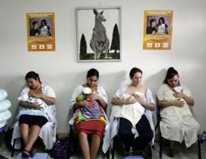 """ผู้นำบราซิลประกาศทำสงครามกับ """"ยุง"""" ขจัดการแพร่ระบาดไวรัสซิกา"""