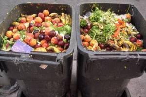 ฝรั่งเศสเริ่มใช้กฎหมายห้ามซูเปอร์มาร์เกตทิ้งอาหารใกล้หมดอายุ บังคับแจกการกุศล