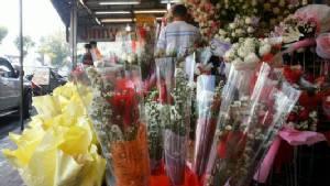 ร้านดอกไม้เชียงใหม่ครวญยอดขายกุหลาบวาเลนไทน์ตกฮวบ 30-40%