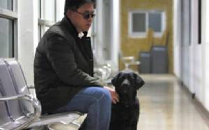 """โจรกลับใจคืนสุนัขนำทางแก่ชายตาบอด พร้อมโน้ตสั้นๆ """"โปรดยกโทษ"""""""