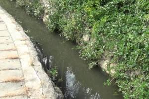 เหม็นหึ่ง! น้ำเสียบนเกาะพีพีล้นบ่อบำบัดส่งกลิ่นคลุ้ง ท้องถิ่นรับหมดปัญญาแก้