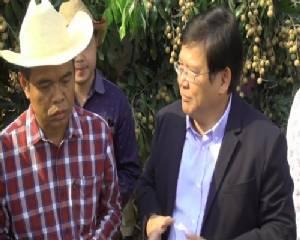 รมช.พาณิชย์ลงพื้นที่วางแผนจัดการราคาผลไม้จันทบุรี