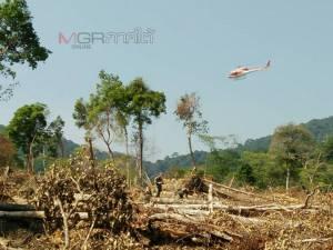 จนท.บินสำรวจป่าอุทยานฯ เขาปู่เขาย่า พบถูกแผ้วถางหลายจุด ไม้ซุงขนาดใหญ่อีก 9 ท่อน