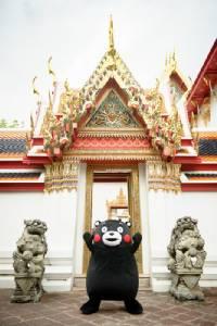 """""""คุมะมง"""" มาแล้ว!! หมีซุป'ตาร์จากญี่ปุ่นบินตรงสู่เมืองไทย"""