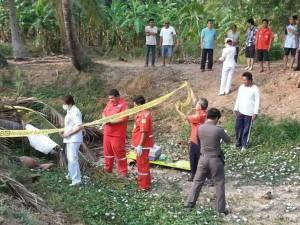สลด! พ่อเฒ่าวัย 83 โดนต้นมะพร้าวล้มทับเสียชีวิตคาสวน