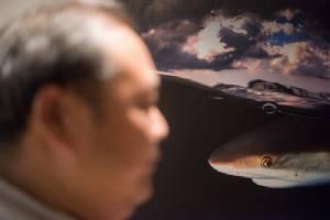 """""""ภาพที่ดีที่สุดของผมคือ จังหวะชั่วพริบตา"""" นัท สุมนเตมีย์  นักถ่ายภาพใต้น้ำระดับแถวหน้าของเมืองไทย"""