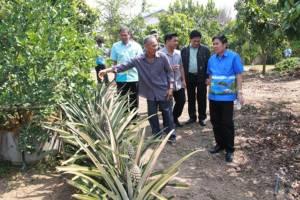 ประจวบฯ เปิดโครงการเพิ่มผลิตภาพการผลิตของเกษตรกรที่ได้รับผลกระทบจากภัยแล้ง