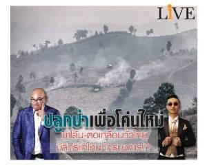 ปลูกป่าเพื่อโค่นใหม่... เขาโล้น-ตอเกลื่อนทั่วไทย มีสิทธิแค่ไหน-ใครบงการ!!?