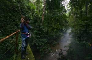 """กาแฟ """"มีวนา"""" บนความยั่งยืนของป่าต้นน้ำ"""