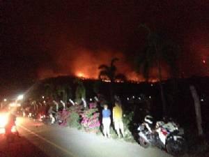 ไฟไหม้ป่าเชิงดอยสุเทพบ่ายยันดึกยังดับไม่ได้ ผลาญแล้วนับร้อยไร่