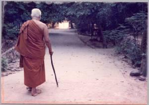 วันล้ออายุ  ชาตกาล 110 ปี พุทธทาสภิกขุ