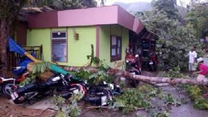 ลมพายุพัดต้นยางพาราล้มทับหลังคาบ้าน และรถ จยย.บนเกาะช้าง เสียหาย