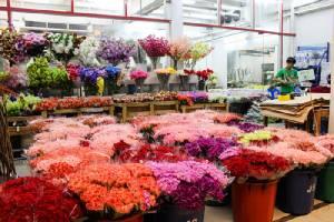 """สัมผัสมนต์เสน่ห์ใหม่ตลาดดอกไม้ """"ปากคลองตลาด"""" สวยสะพรั่งหลังถูกจัดระเบียบ!!"""