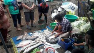 ฤดูน้ำหลากพรานปลานครพนมออกเรือหาปลาน้ำโขงสุดคึกคัก