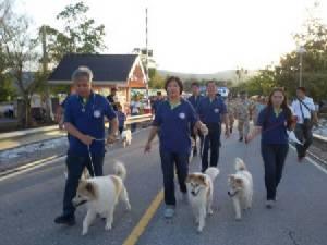 แควน้อยฯ มาราธอน คึกคัก สุนัขบางแก้ว 7 ตัวชูโรง นำทีมนักวิ่งร่วมชิงชัย