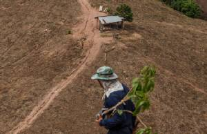 ปลูกที่ดิน ปลูกที่ใจ น่านนคร ความหวังป่าต้นน้ำท่ามกลางระบบทุนนิยมเสรี