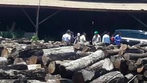 ดูคลิปนี้.. กลุ่มทุนในลาวยังขนไม้ซุงสนั่นเมืองไม่สนคำสั่งรัฐบาล