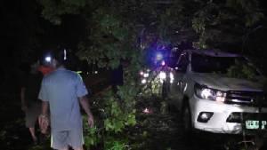 พายุฝนกระหน่ำตราดพัดต้นไม้ริมถนนล้มทับรถยนต์เสียหาย 2 คัน