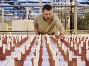 """ดินแบบ """"ดาวอังคาร"""" ปลูกพืชได้ (น่าจะ) ปลอดภัยต่อการบริโภค"""