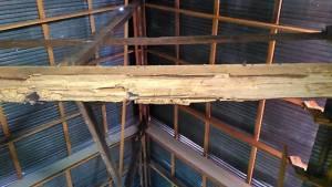 ร้องกรมศิลปากรเร่งซ่อมเจดีย์-โบสถ์วัดศรีภูมิ หลังแรงแผ่นดินไหวลาวทำพัง