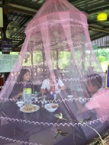 """""""แม่ค้าก๋วยเตี๋ยวต้มยำ"""" สระแก้ว ไอเดียเก๋กางมุ้งครอบโต๊ะอาหารป้องกันแมลงวัน"""