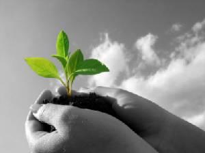 SMEs Boost Up:กิจการเพื่อสังคม องค์กรเล็ก-ใหญ่ก็ทำได้