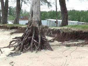 หาดปากเมงเจอคลื่นกัดเซาะชายฝั่งรุนแรง หวั่นปล่อยไว้นานกระทบการท่องเที่ยว