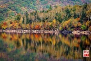 """เมื่อ """"ฤดูใบไม้ร่วง"""" เคาะประตู ธรรมชาติก็แต่งแต้มแดนมังกรงดงามด้วยสีสันสดใส (ชมภาพ)"""